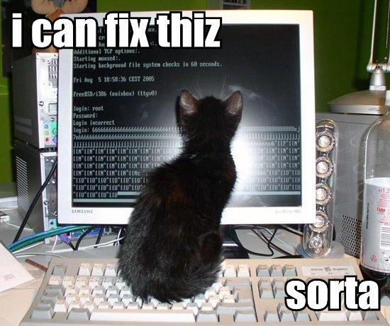 i-can-fix-thiz-sorta-779507.jpg